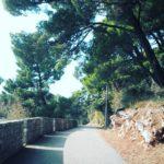 Пешие прогулки в Черногорииы