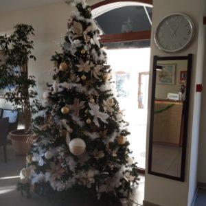 Обычаи в Рождество в Черногории